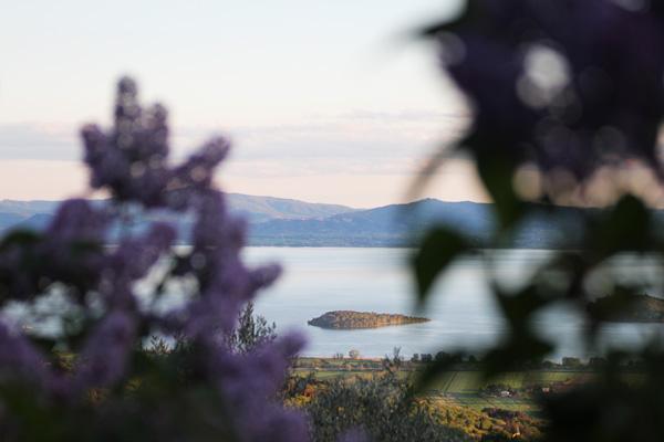 lago trasimeno panorama