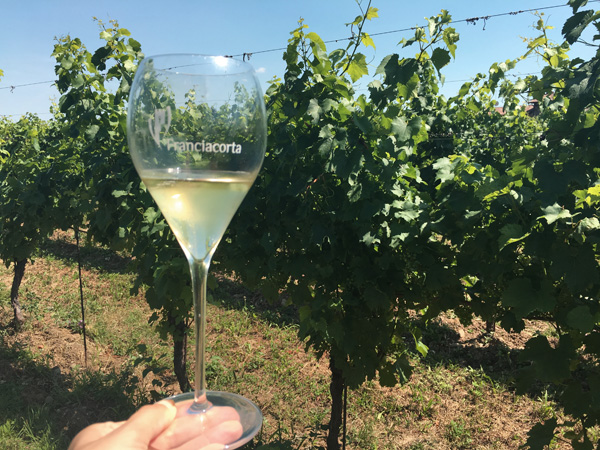 vigne di franciacorta