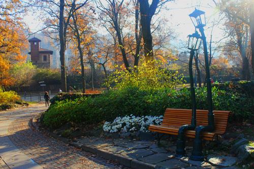 Lampioni innamorati Parco del Valentino