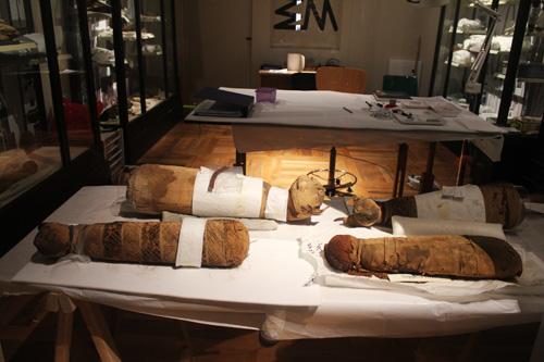 Sala del restauro Museo Egizio