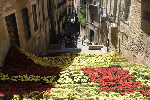 strade con fiori a girona