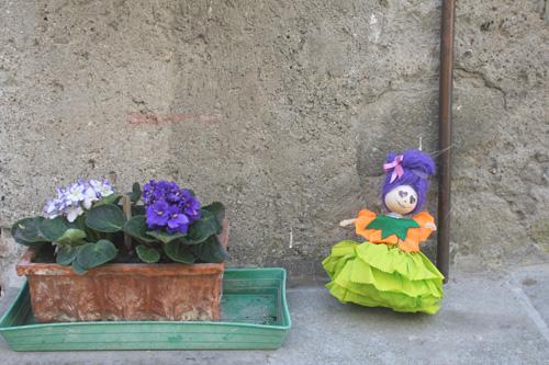 fiori al peperino in fiore
