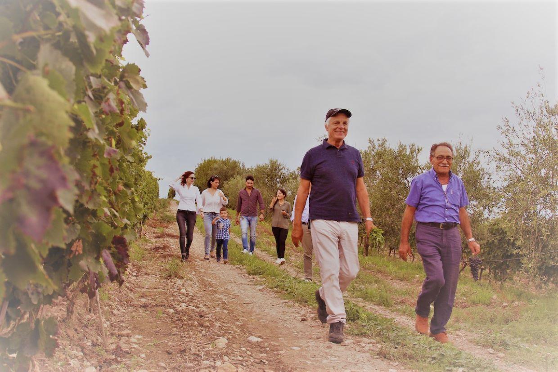 Cantina Placido Volpone in Puglia