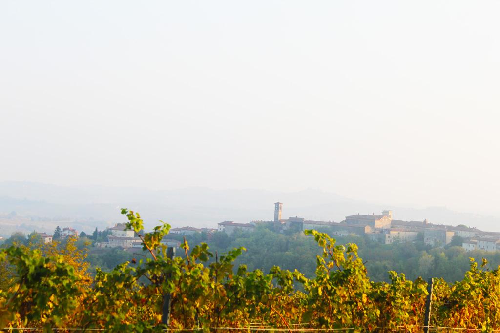 il panorama del monferrato